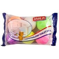 Jual DAHLIA KAMPER COLOUR BALL 2
