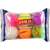 DAHLIA KAMPER COLOUR BALL Murah 5