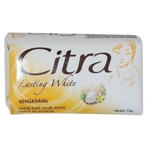 Citra Ts Lasting White Bengkuang