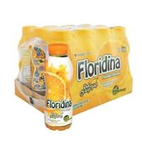 Jual Floridina Orange 2