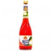 Jual abc syrup special grade coco pandan QI 585ML 2
