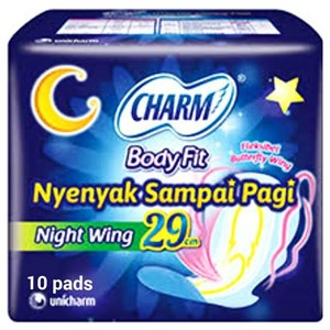 Body Fit Super Comfort Night Wing 29cm