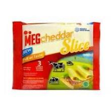 MEG SLICE 3 SLICE