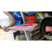 Jual Tuna Fillet