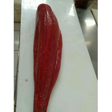 Loin tuna fresh