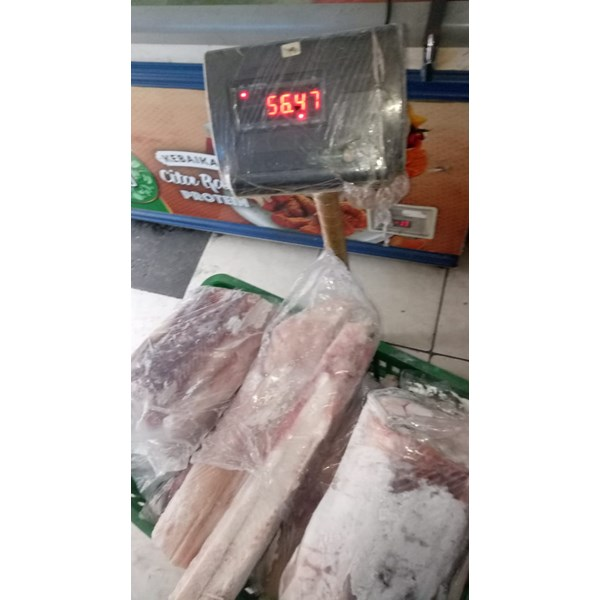 fish fillet seafood