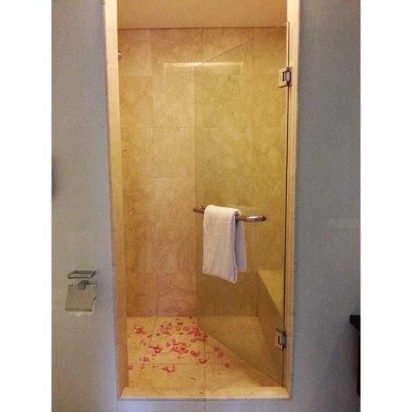 Pintu Kamar Mandi Shower Tempred