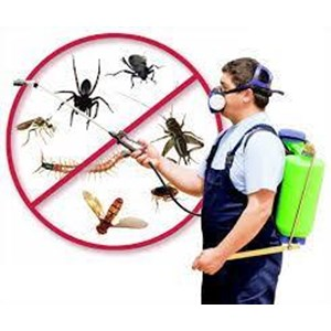 Pest control Fendona