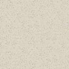 Granito Salsa Crystal Ivory 60x60 Polished 1