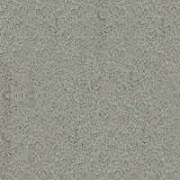 Granito Salsa Oasis Greystone 60x60 Unpolished