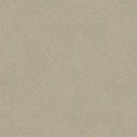Granito Salsa Oasis Aluminium 60x60 Unpolished