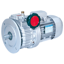 Gear Motor - BONFIGLIOLI - Gear Box - Gear Motor