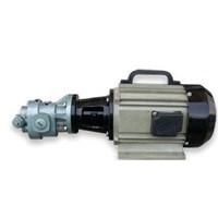Distributor Gear Pump  3