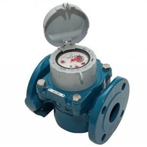 Water Meter Elster - Elster Water Meter Waltman