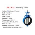 Butterfly Valve DELVAL 3