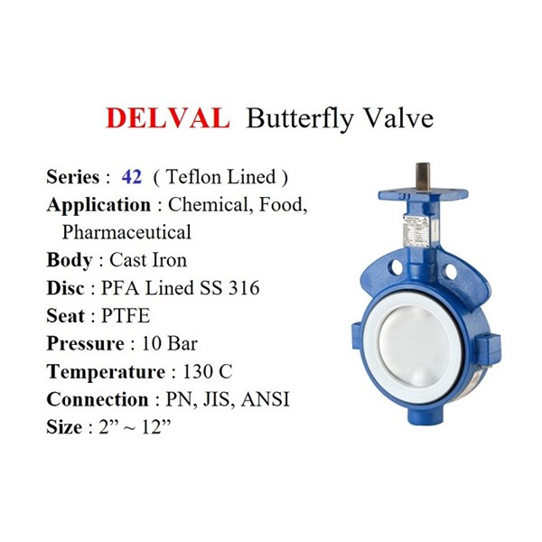 Butterfly Valve DELVAL