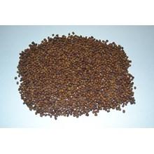 Kacangan Pueraria Javanica