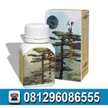 Obat Penggemuk Badan Alami Murah Info hub: 0812960