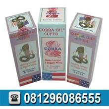 Obat Pembesar Cobra Oil