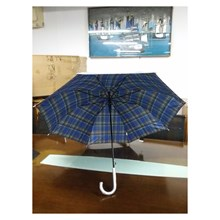 Umbrella Promotion Motif Box