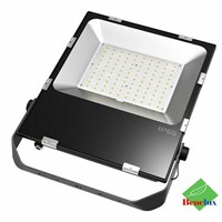 Lampu LED Floodlight