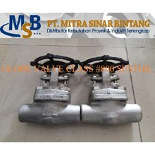 Gate Valve Class 800 Stainless Steel 316L