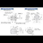 ANSON IVP Series Single Pumps (pompa hidrolik) 3