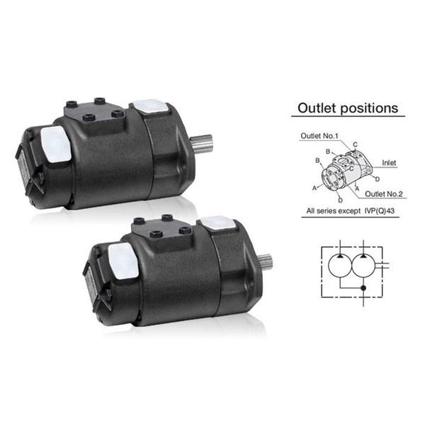 ANSON IVP Series Double Pumps (pompa hidrolik)