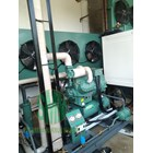Semi Contact Plate Freezer Machine 2