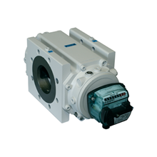 Delta Rotary Gas Meter ITRON