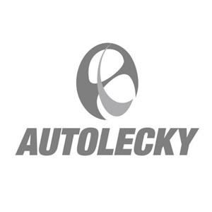 Aksesoris Mobil APS (ASHDOWN) AF1840 ELBOW 90DEG MALE INSERT O RING #6