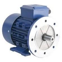 Dinamo Mesin Western 3 Phase Low Voltage Motors