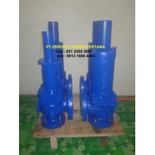 Pressure Safety Relief Valve
