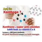 Xamthone Plus Kulit Manggis 3