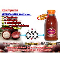 Jual Xamthone Plus