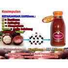 Jus Manggis Xamthone Plus 4