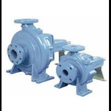Ebara FS Pump