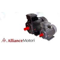 Jual Electric Motor Heavy Duty Alliance