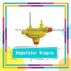 Regulator Nipple 1