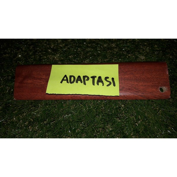 List Adaptasi