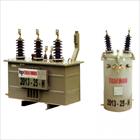 Distribution Transformer - SPLN D3 1