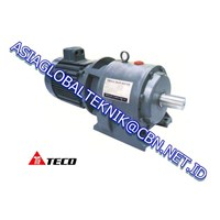 TECO ELECTRIC GEAR MOTOR