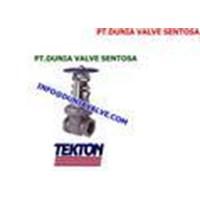 TEKTON VALVE 1
