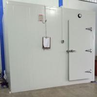 Cold Storage CSR 1