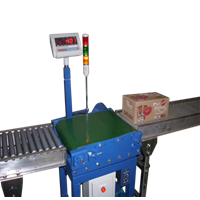 Jual Belt Conveyor Scale
