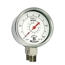 Double bourdon tube differential gauge