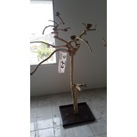 Java Wood Tree Play Stand Bird Perch Parrot Stand Supplier And Manufacture From Indonesia Murah 5