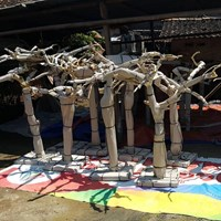 Beli Java Wood Tree Play Stand Bird Perch Parrot Stand Supplier And Manufacture From Indonesia 4