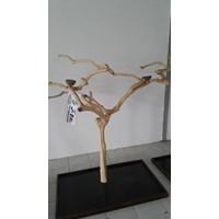 Jual Kerajinan Kayu Javawood Playstand Coffee Tree Bird Perch Multi Branches Parrot Stand Java Wood Branch 2