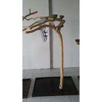 Kerajinan Kayu Javawood Playstand Coffee Tree Bird Perch Multi Branches Parrot Stand Java Wood Branch Murah 5